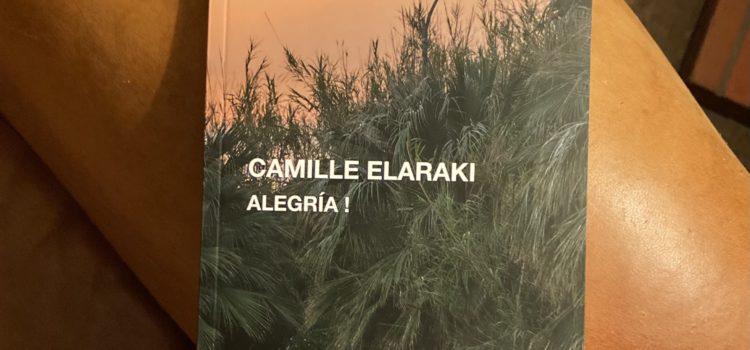 [Chronique] Alegría de Camille Elaraki